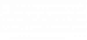 Zareou - A World Full of Opportunities